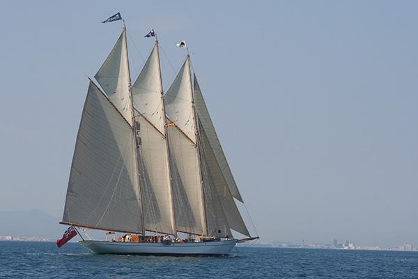 velero-adix8-600-400